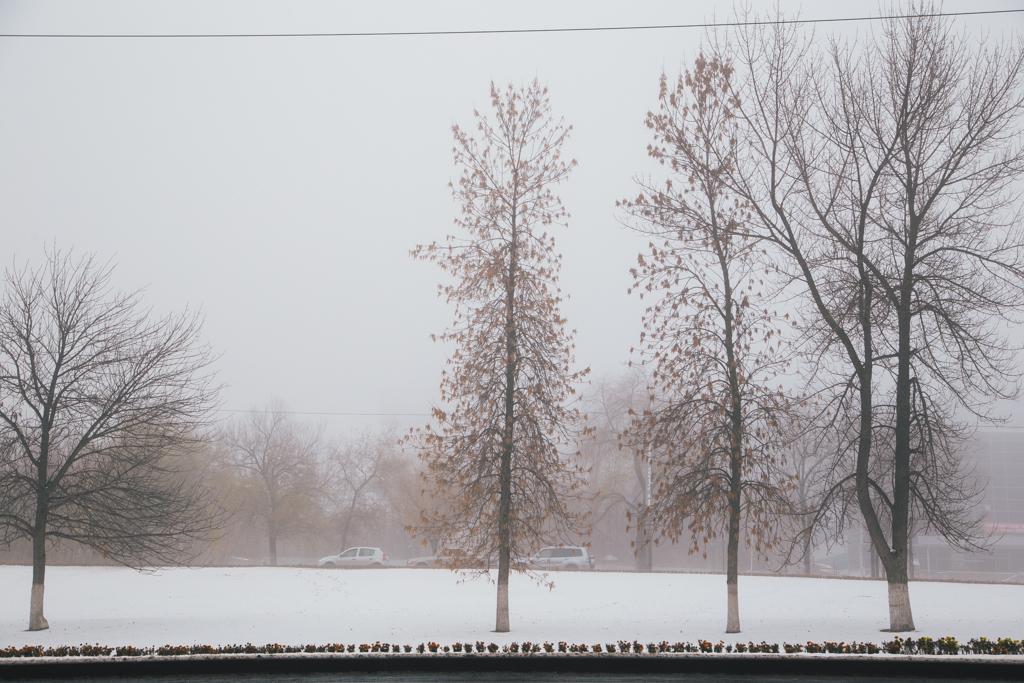 туман_00017