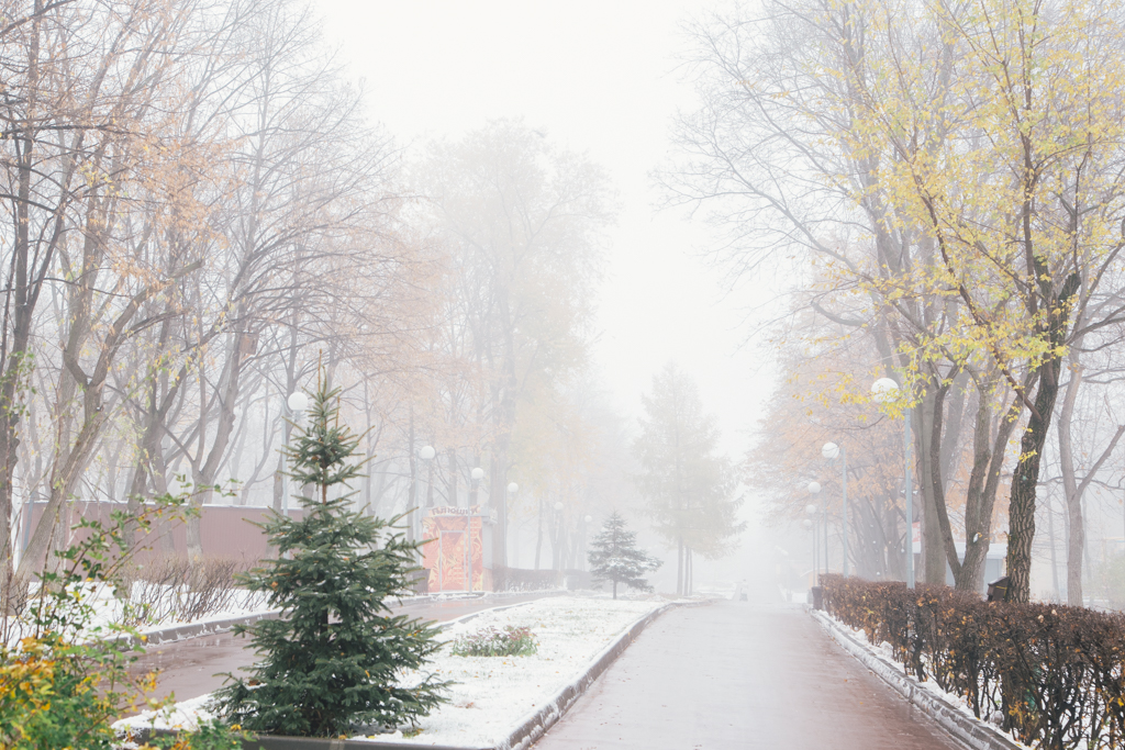 туман_00020