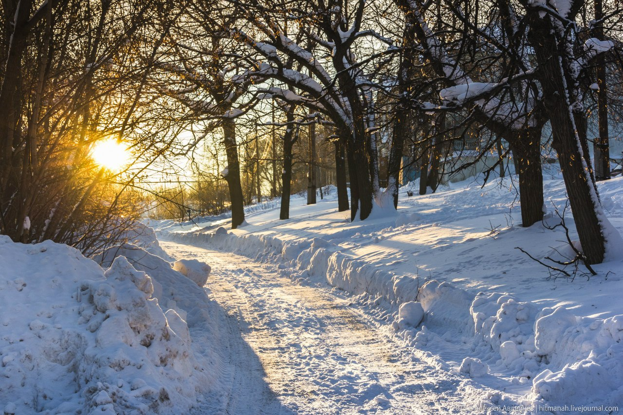 Березовй проезд зимой
