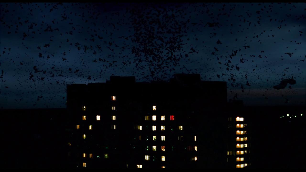 nocnoj-dozor-008