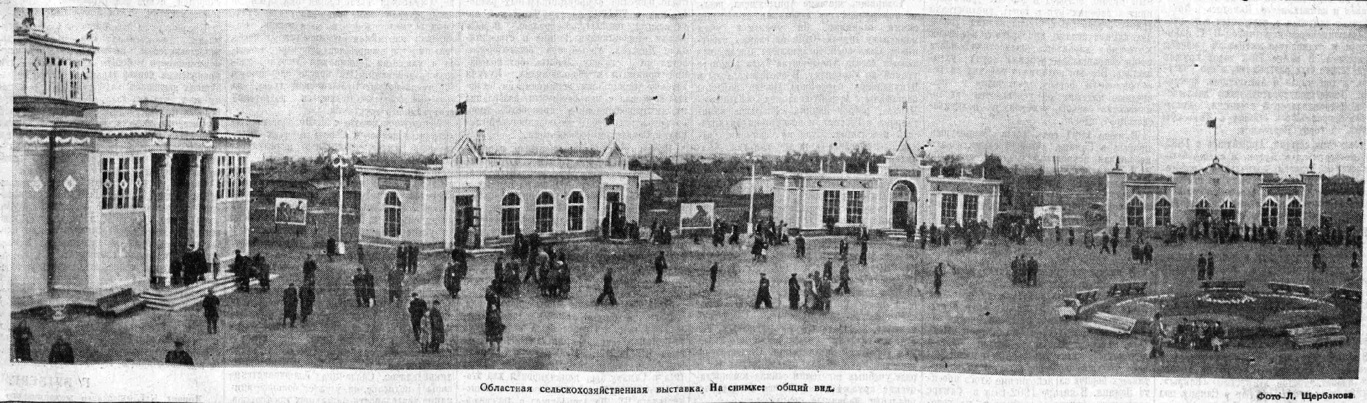 Московское-ФОТО-11-ВКа-1955-09-27-областная СХ выставка