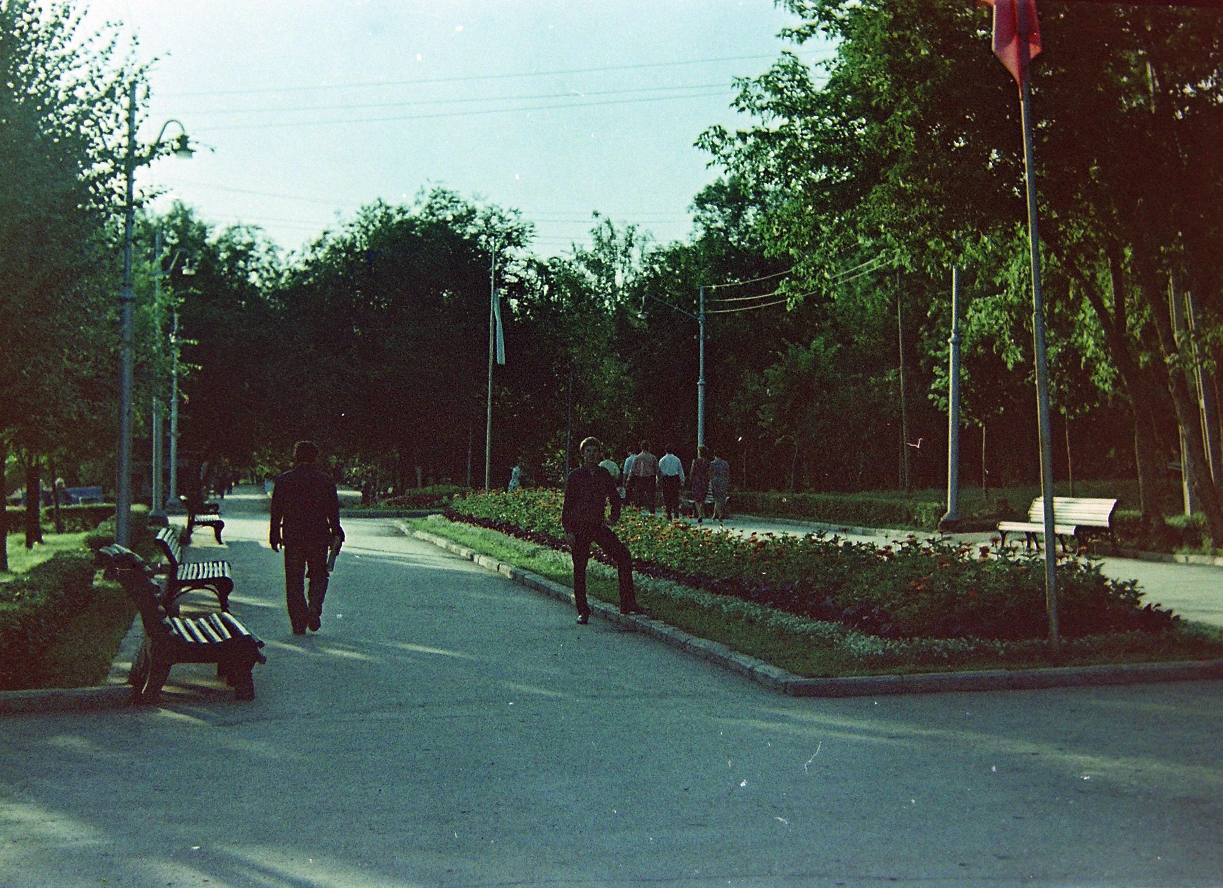Центральная аллея Загородного парка
