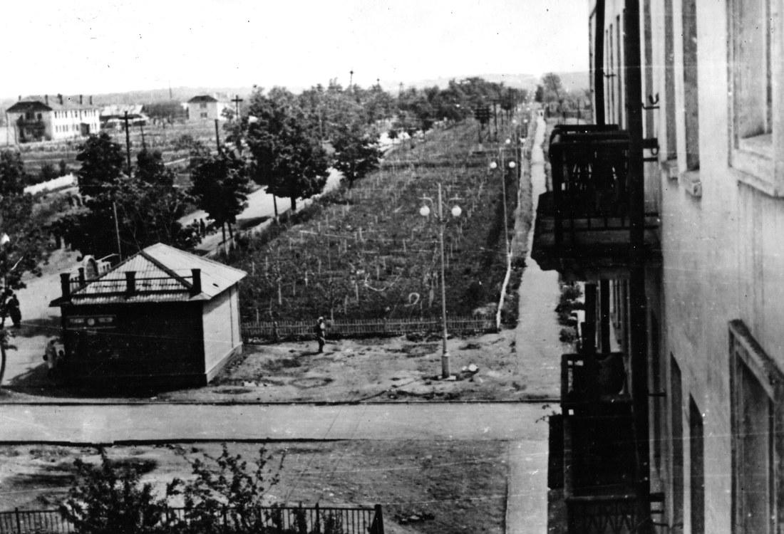 Вид на улицу Сергея Лазо