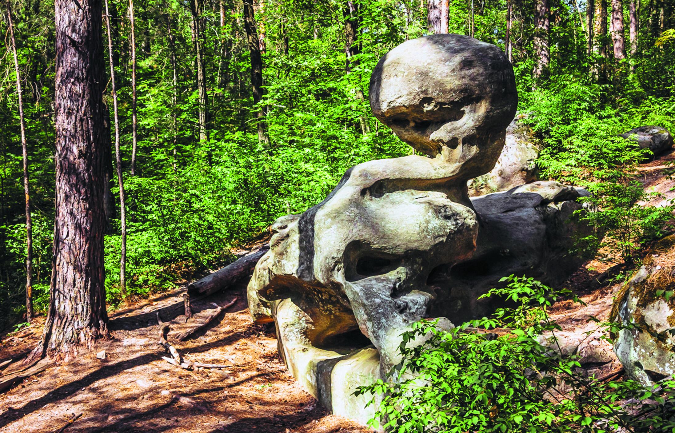 Приволжская правобережная лесостепь. Семиключье2