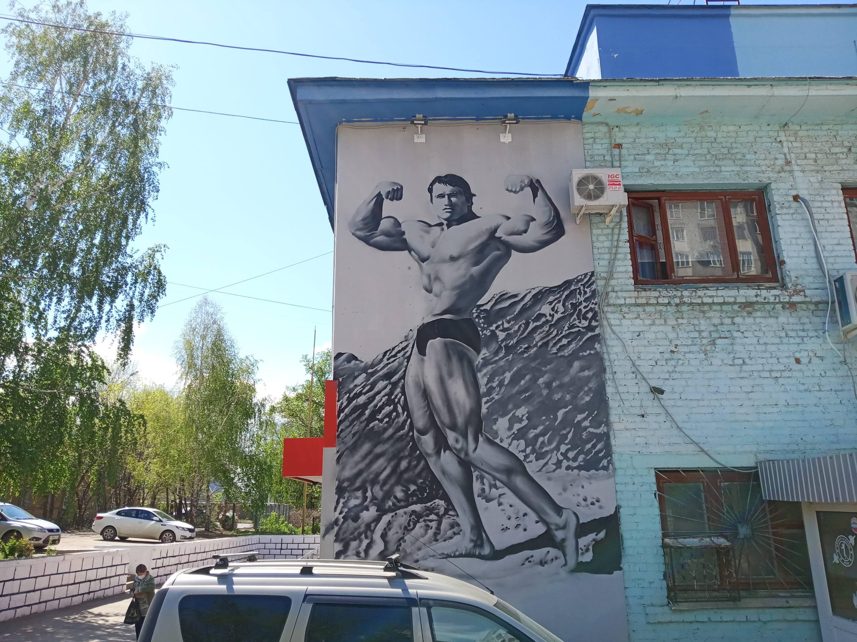 Граффити с Железным Арни