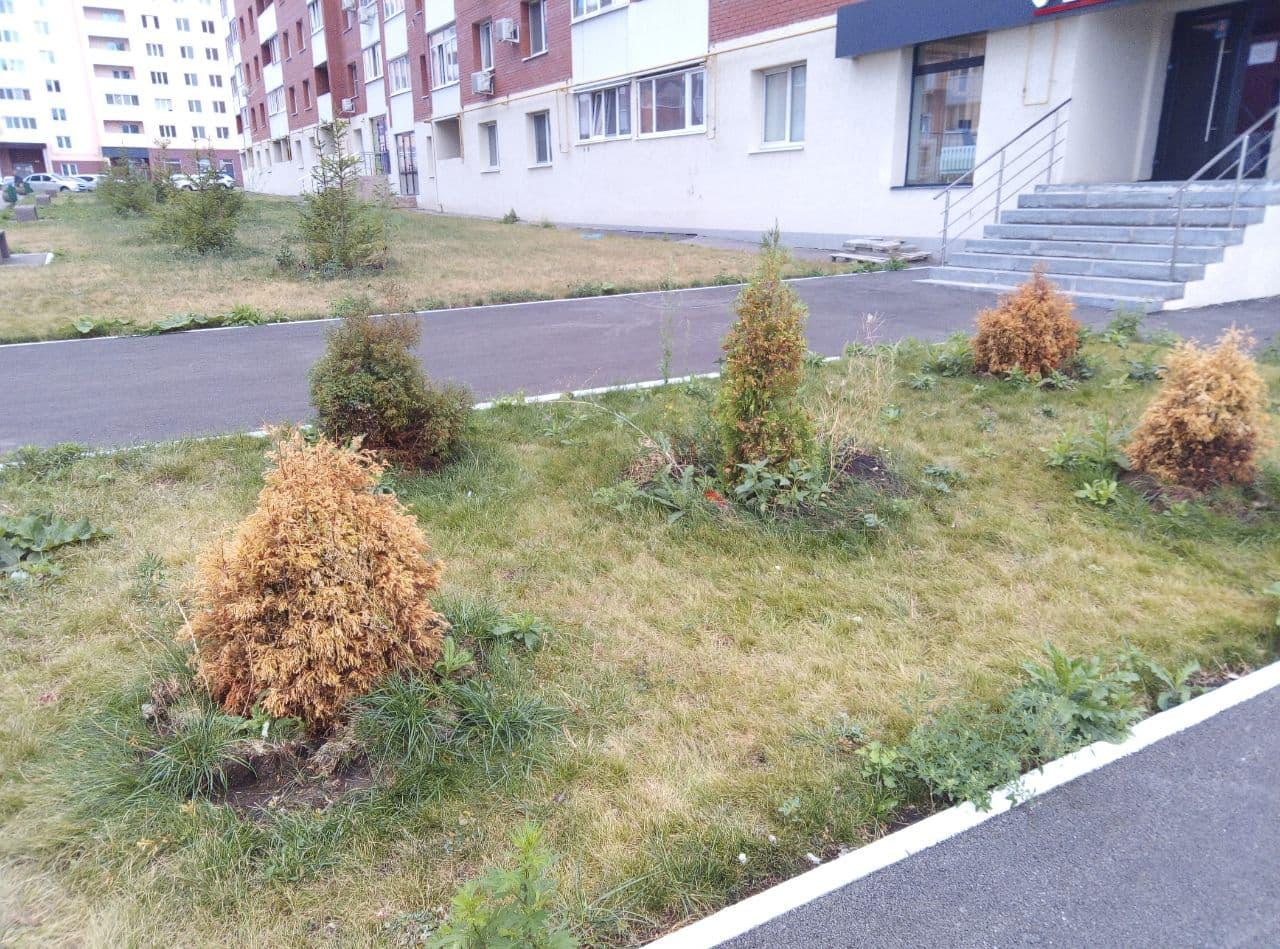 photo_2021-09-17_09-37-16